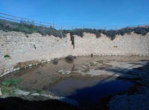 La bassa de Sarroca